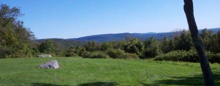 Metzgars view